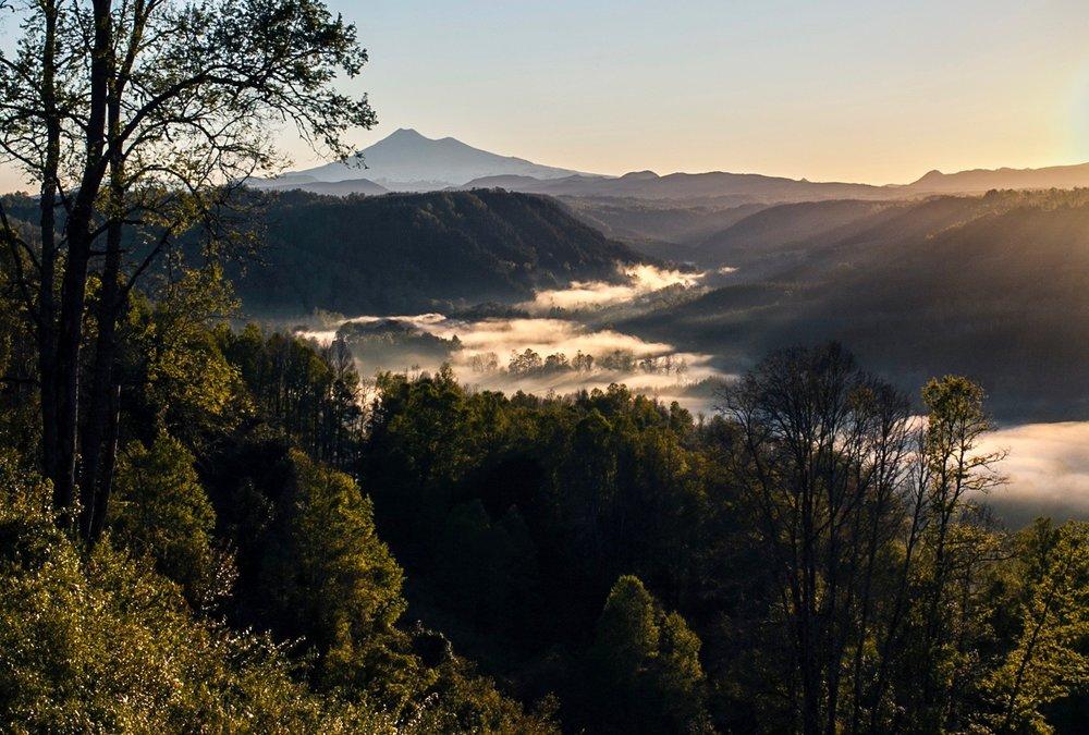 Adventure travel and Maqui Berries Samadhi Eco Resort Chile