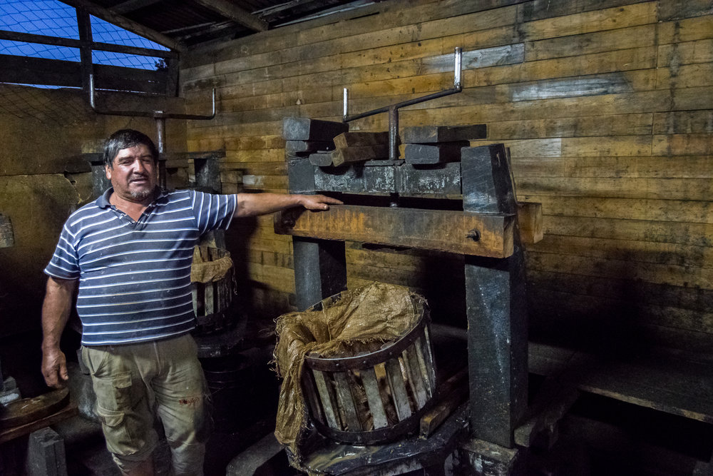 Mapuche Chicha with Samadhi Eco Resort, Chile.
