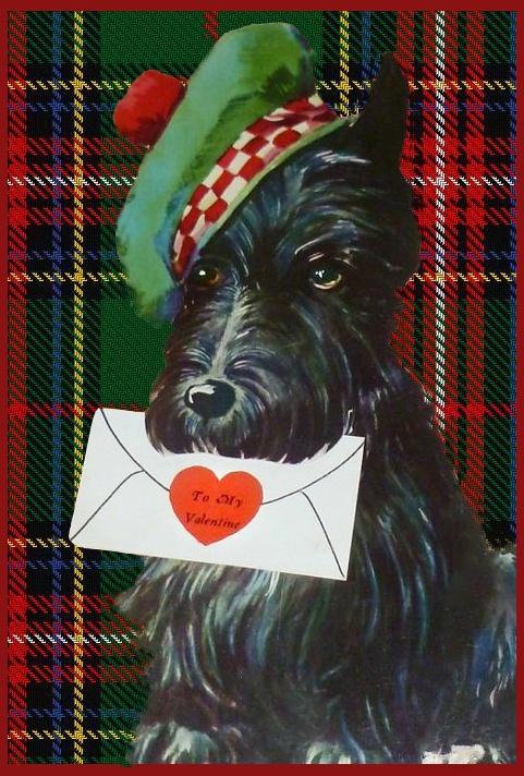Pup Messenger.jpg