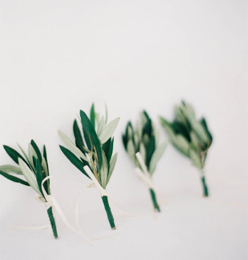 Modern olive sprig boutonnieres for a minimalist wedding.