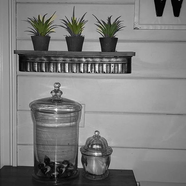 Color pop your photos! Cute shiplap walls with pots of grass. Color pop is a free app to spot highlight items in your photos. #colorpop #behindthevibe #bethev behindthevibe.com
