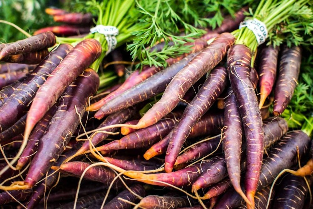 foodiesfeed.com_red-carrots-at-farmers-market_low-1024x683 copy.jpg