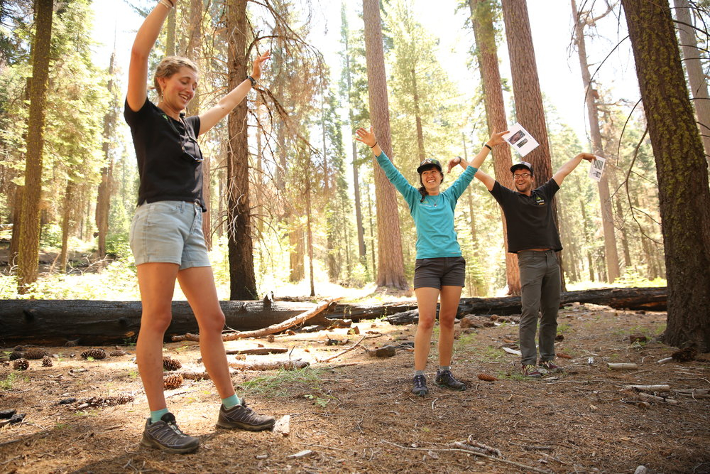 Environmental Educators Lead Activity in Yosemite National Park, California