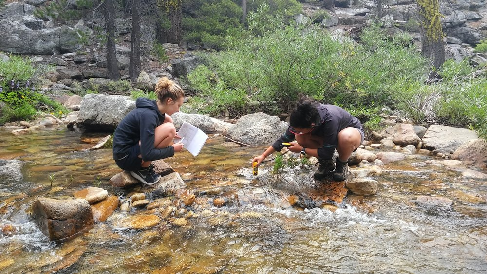 students collect data along a stream using a kestrel, Yosemite national park.