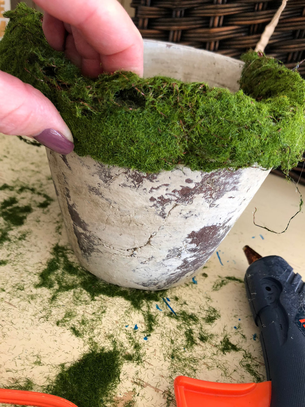 1 - First, you'll need to measure the top of your container; then cut your moss the same length. Work your way around the pot, gluing your moss on the inside, outside and top of the container. This moss bends easily so it's easy to attach.