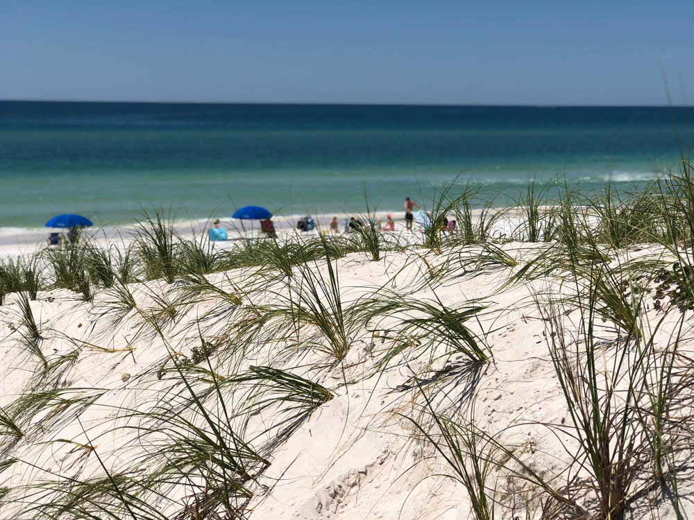 sandy beach view of Grayton Beach, Florida