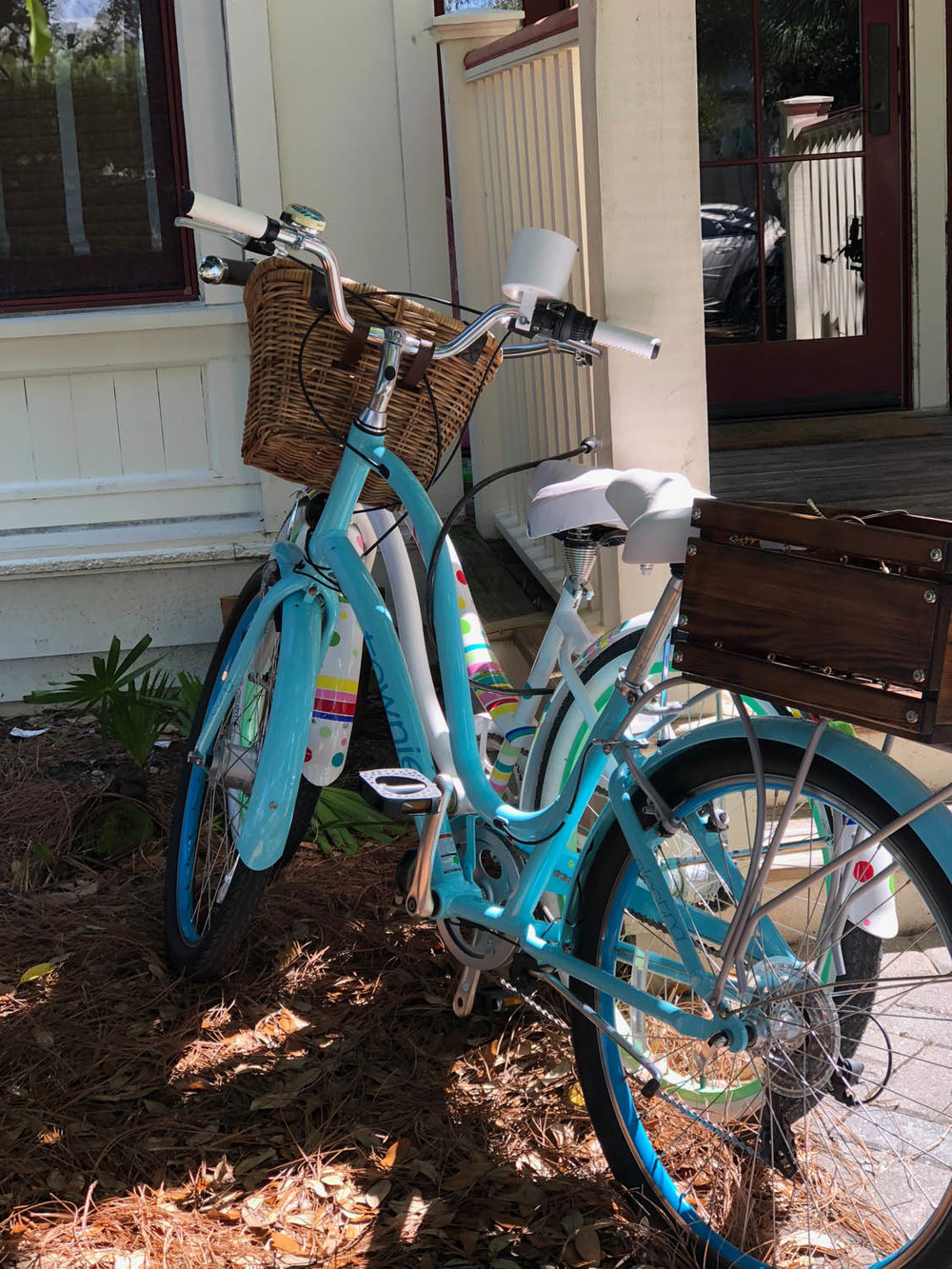 Blue bike in Watercolor, Florida