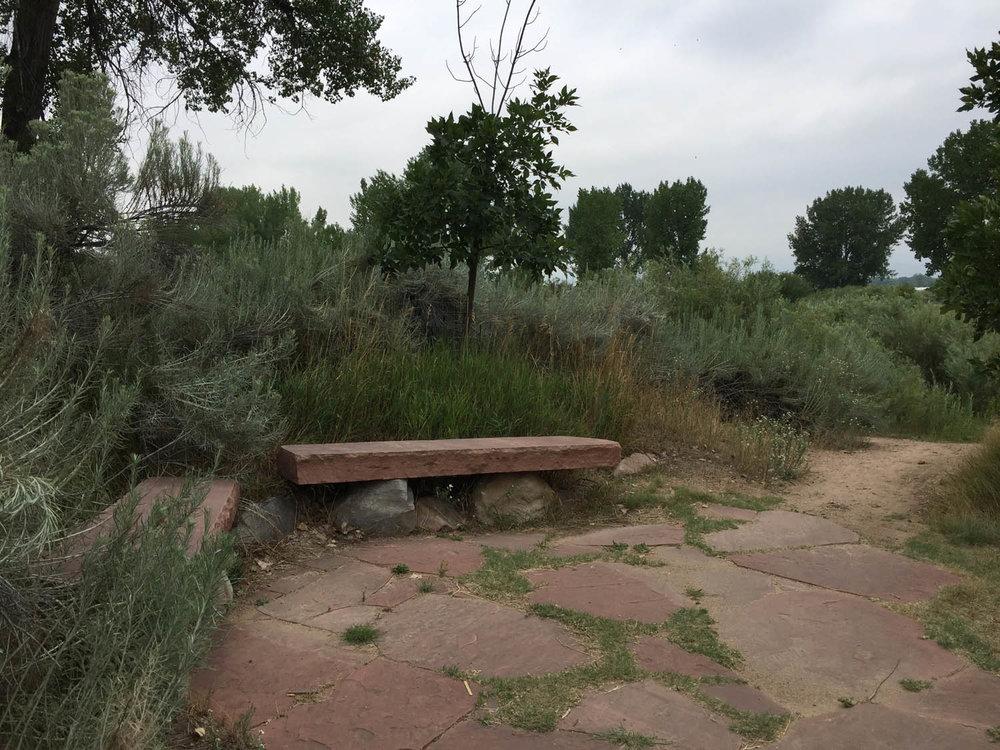 Bench along Platte River Trail in Littleton, CO