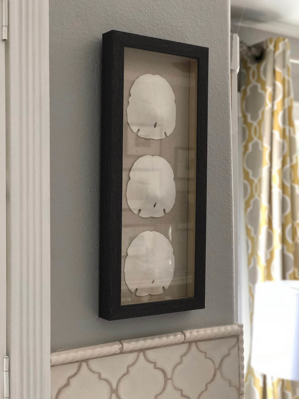 easy DIY shadow box displaying sand dollar memory collection