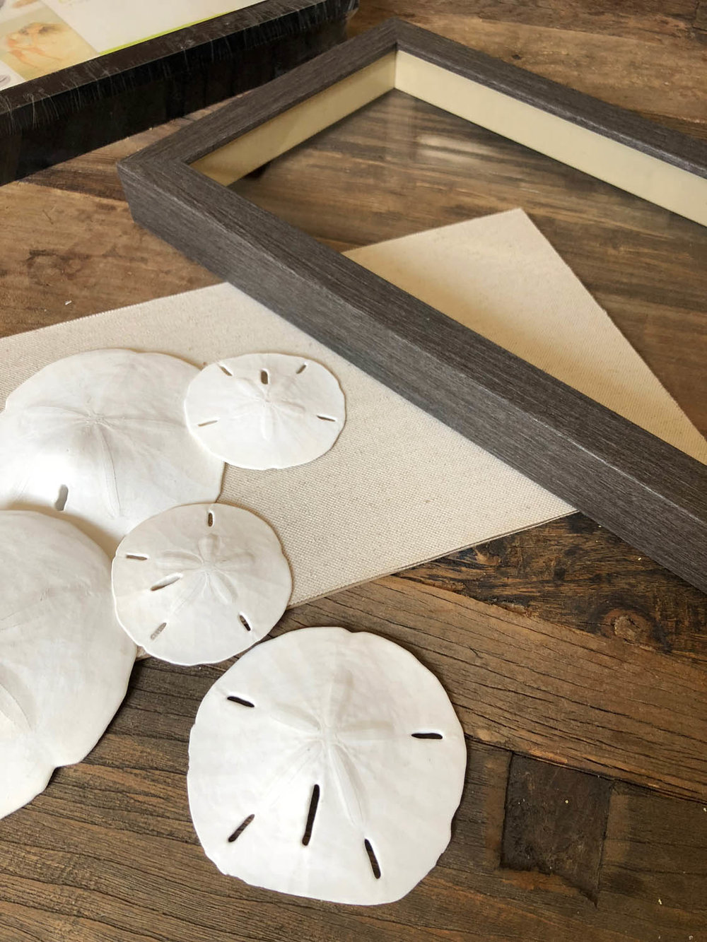 memory shadow box frames and sand dollar memory collection