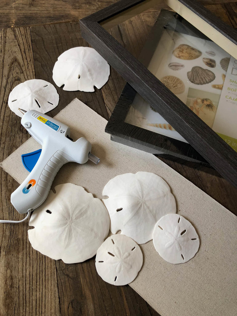 Supplies for shadow box display ideas featuring sand dollar memory collection