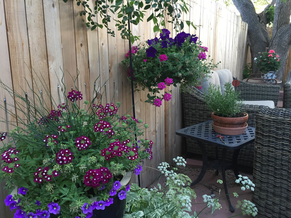 Curtice Cottage patio garden containers