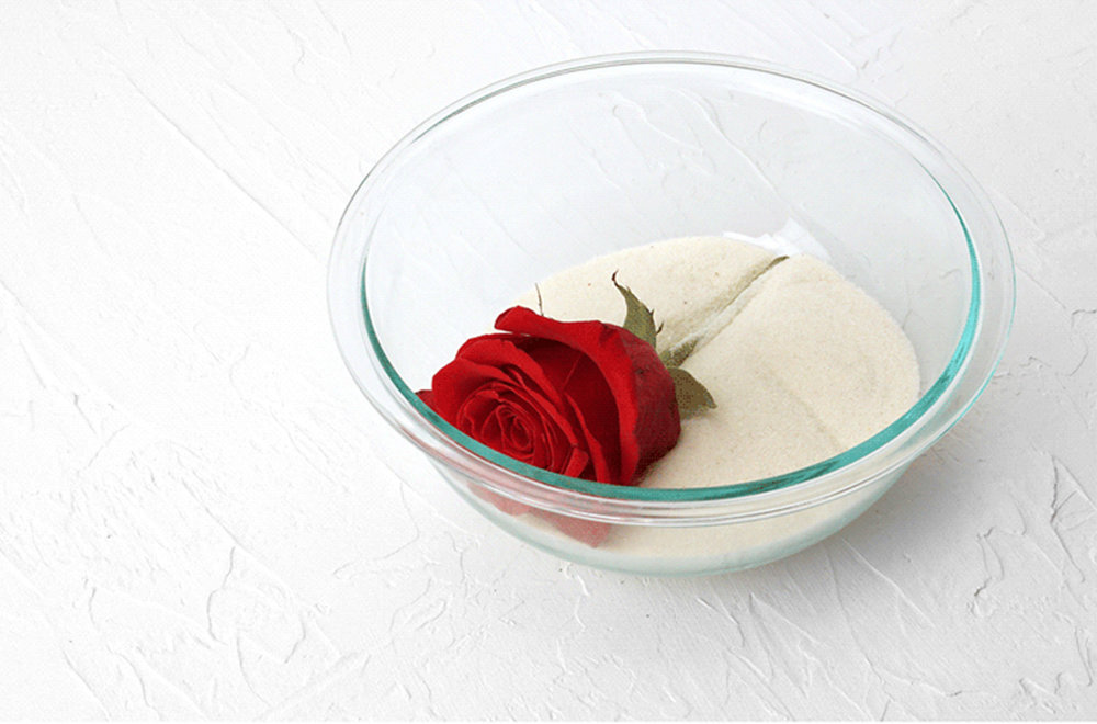 1-fresh-rose-in-bowl-of-silica-for-microwave-drying-1.jpg