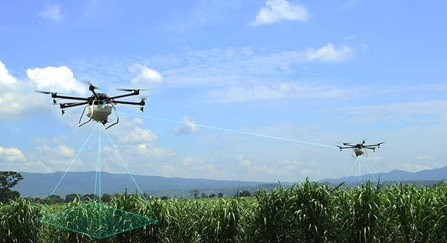 Smarter Together.  The Hylio Agrodrone hardware /software platform is the ONLY agriculture solution on the market that features multi drone crop spraying. Farmers can now be more efficient and effective on the field than ever before.  #spraying #drones #drone #dronelife #dronestagram #agriculture #crops # sugarcane #elsalvador #latinamerica #fleet #swarm