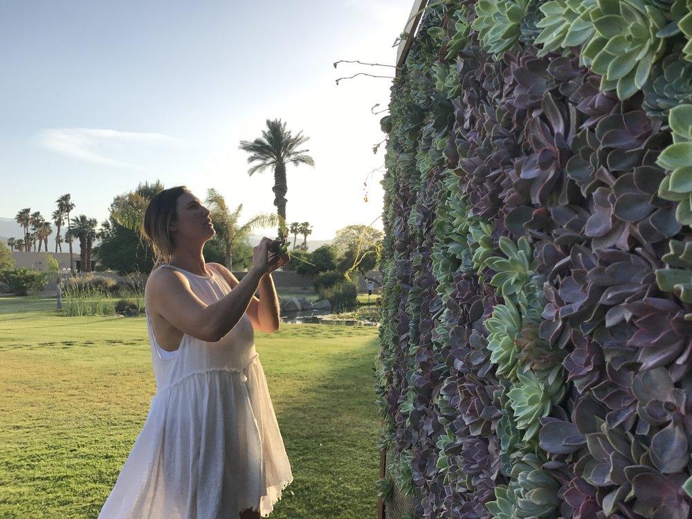 Coachella Installation for Urban Decay Cosmetics