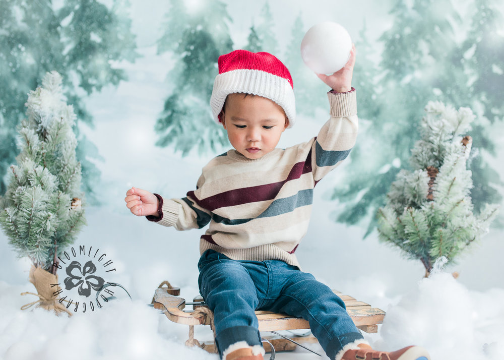 Toronto-NorthYork-Christmas-Minis-Holiday-Photographer-baby-children-kid-photo (14).jpg