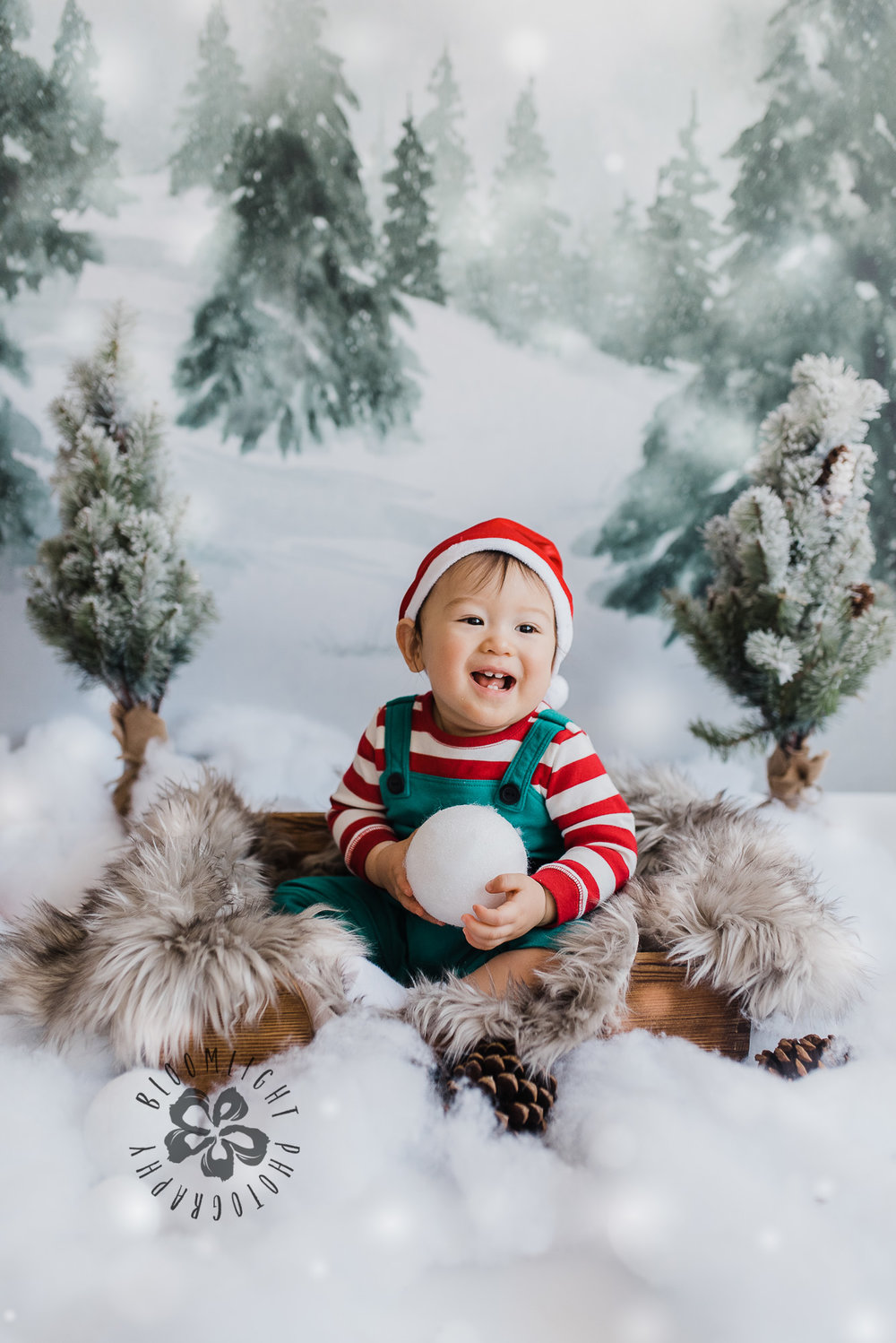 9 month old baby boy happy in a Christmas photo session