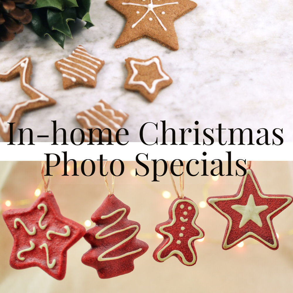 In-home-Christmas-photo-sessions-Special-Toronto-GTA-baby-family-photographer.jpg