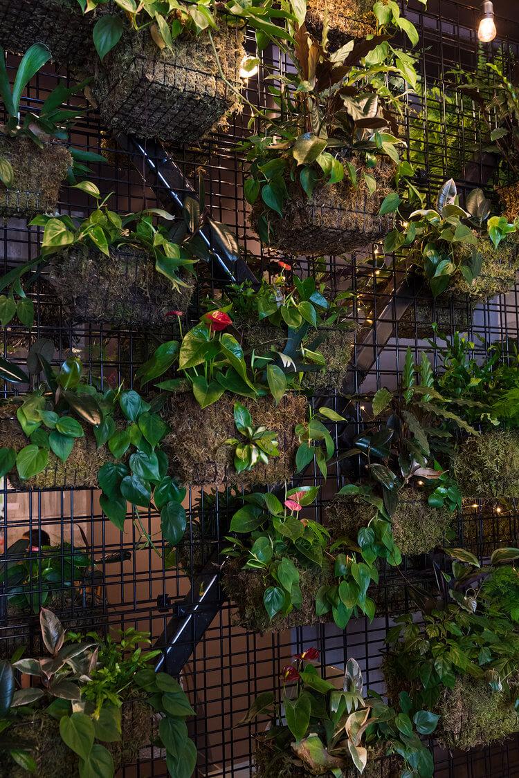 The+Garden+Strathcona+-+Noms+Mag5.jpg