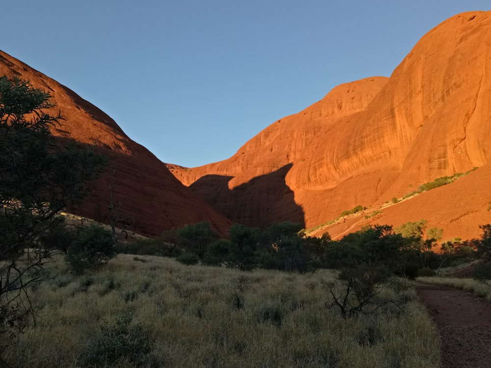 A hidden gem of Australia- Kata Tjuta at sunrise