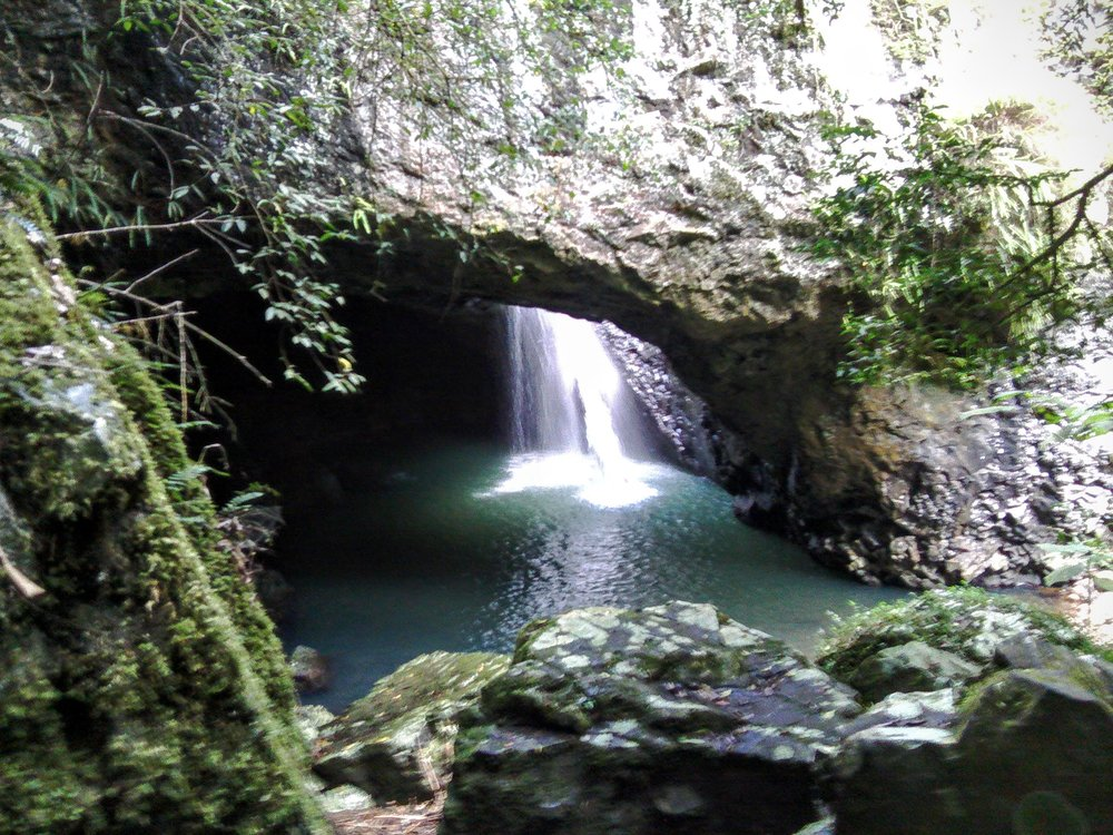 Springbrook National Park's Natural Bridge