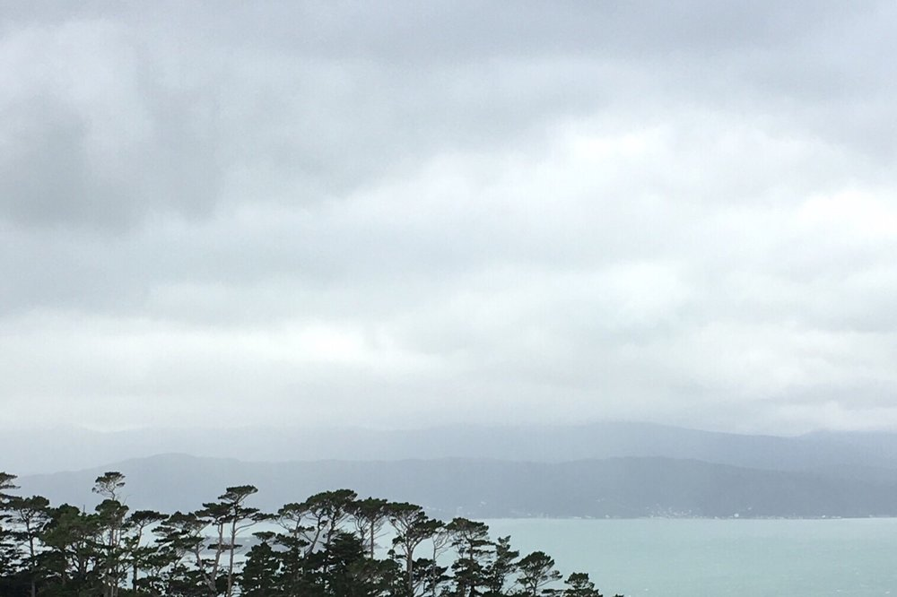 Inspiration for this series of paintings: View of Wellington harbour from the hills in winter