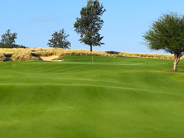 Nanea-Golf-Club-Scott-Main-10in.png