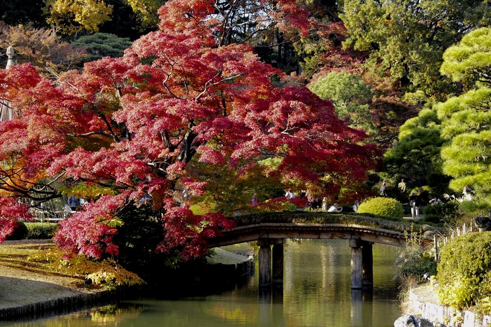 Rikugien Garden © TCVB