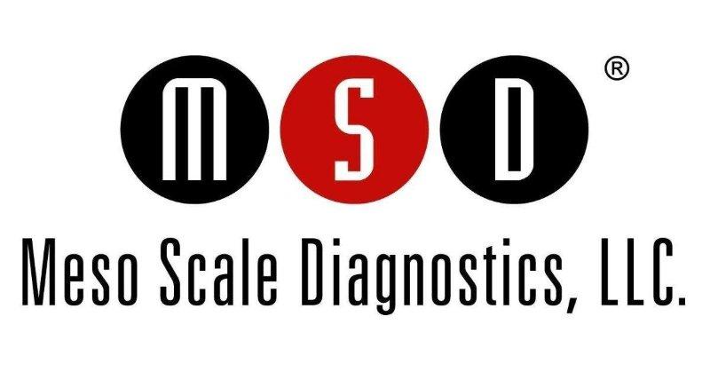 logo_mesoscale.jpeg