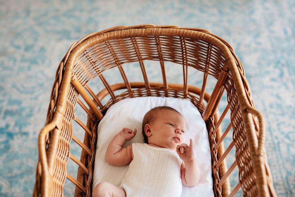 Family and newborn photos Adelaide Carrie Jones