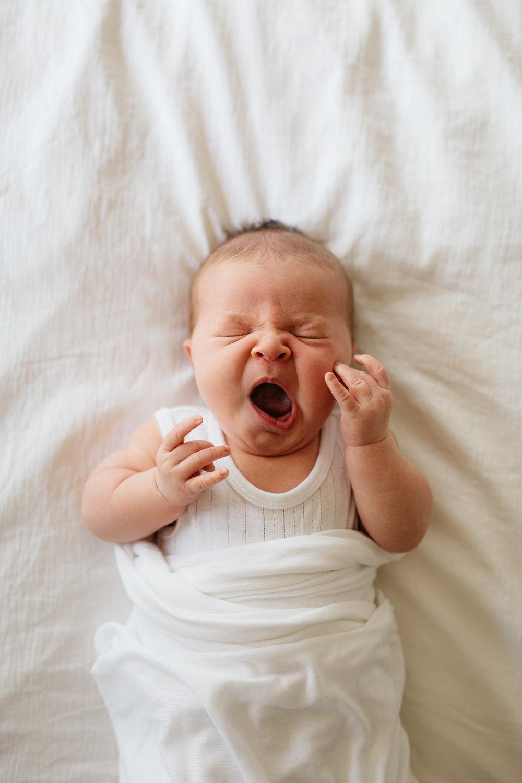Adelaide Newborns lifestyle photography