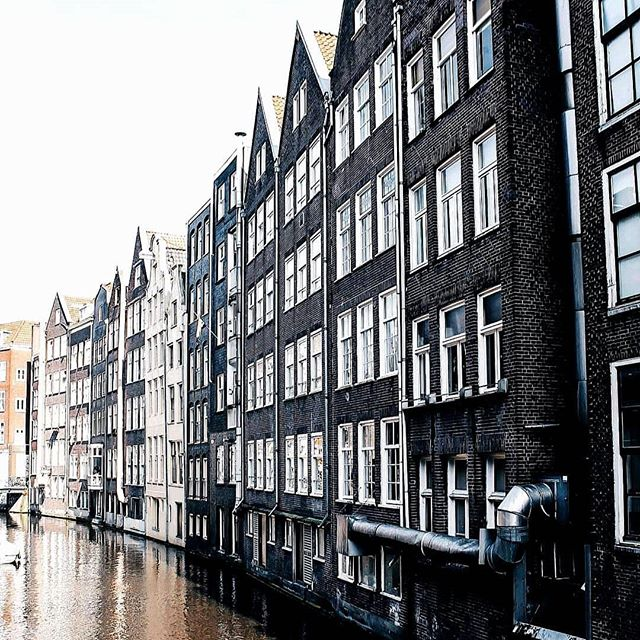 No snarky comment for Amsterdam, aka the Motherland where everyone is as tall as I am and nearly kills each other on bikes (ok, ok, one snarky comment) (I can't help myself) (at least I'm predictable?)
