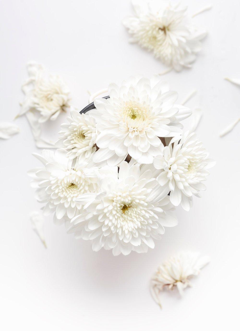 white flowers petals aerial.jpg