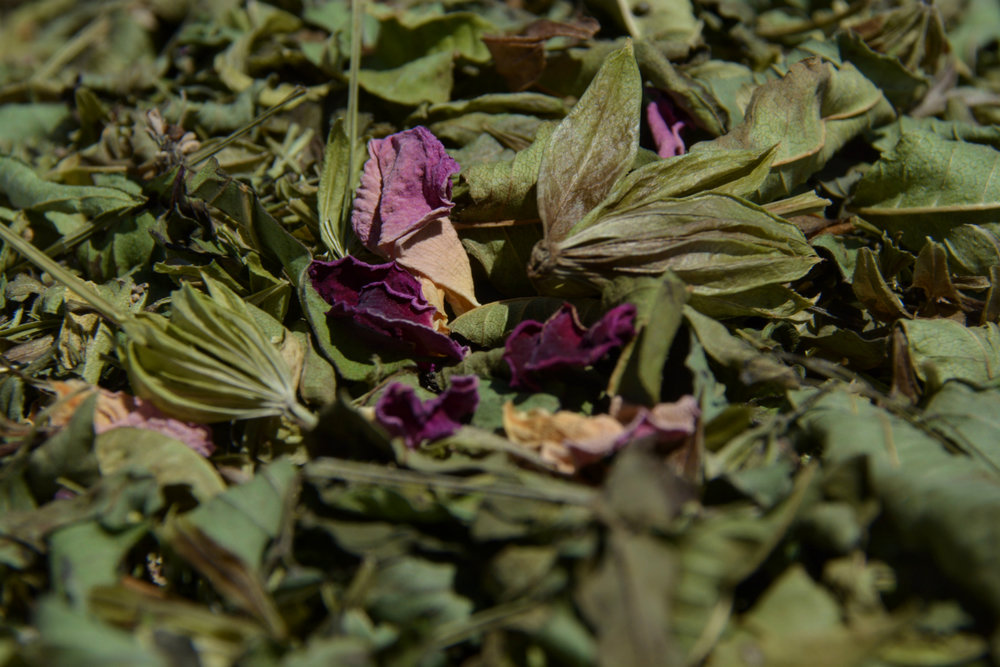 herbs_stash_1600px.jpg