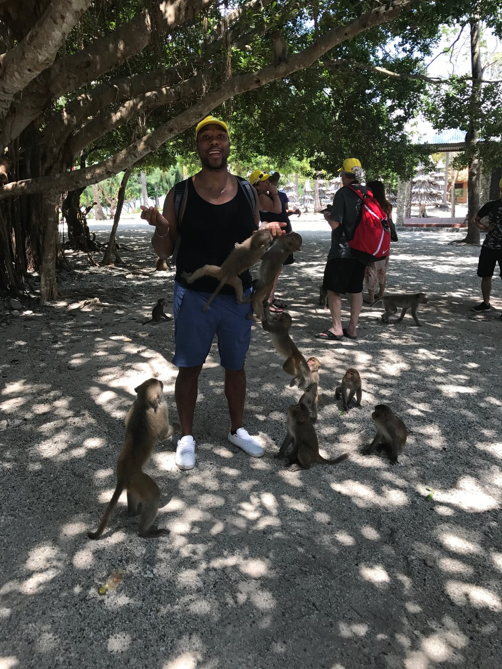 Experience the wild - Hon Cu Lao Island, 2017