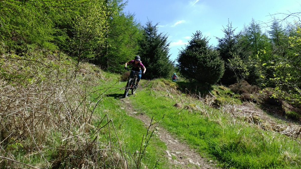Sunny mountain bike riding in the Lake District