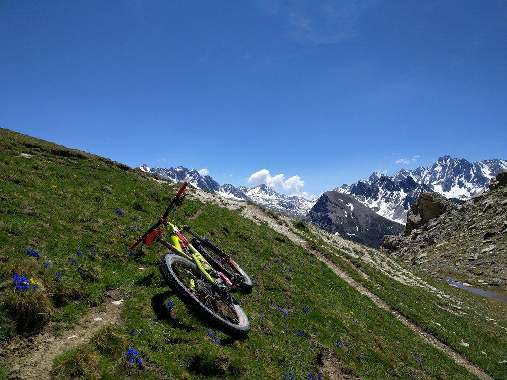 Hautes=Alpes Enduro Safari singletrack