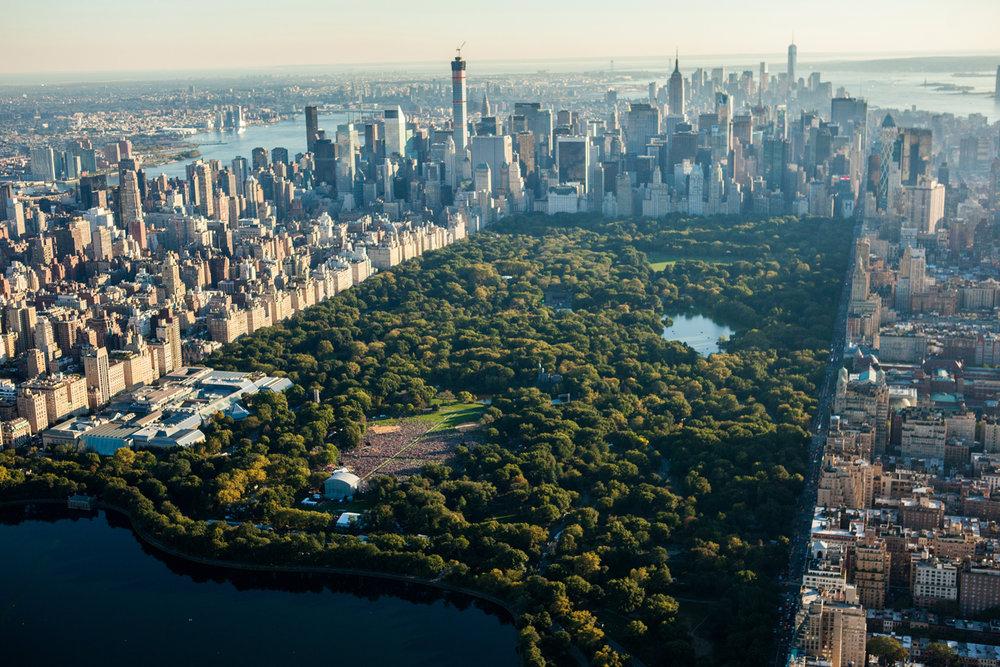Central Park Birdseye