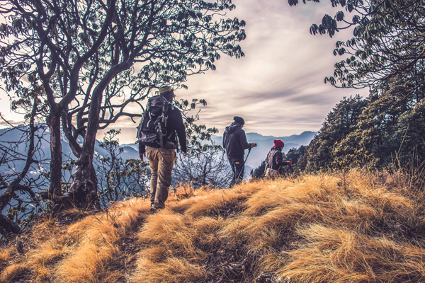 Hiking is one of the most healthy activities you can do both physically and mentally