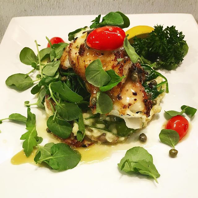 Come enjoy this pan seared Chilean Sea bass with lemon capers cooked in a white wine sauce and topped with cherry tomatoes . #sofla #yelp #rafina #delicious #rafinagreektaverna #greekfood #deezgreeks #bocaraton