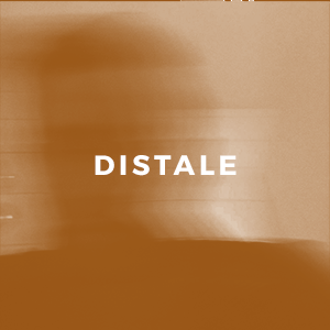 Distale.png