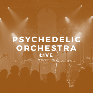 Psychedelic Orchestra.png