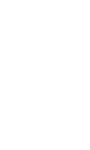 drinks-300x500.png