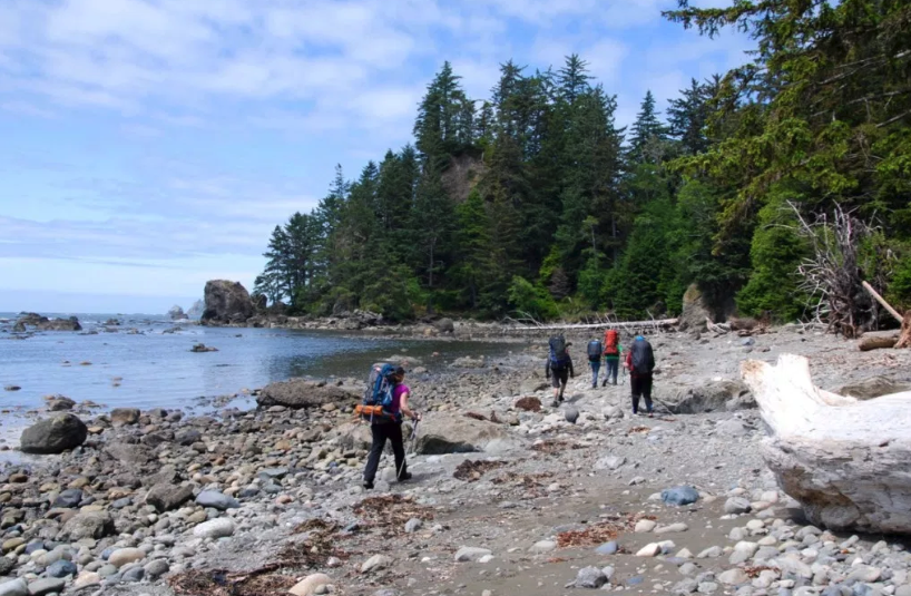 PHOTO OF HIKING and BACKPACKING ON OZETTE TRIANGLE (REVIEW)
