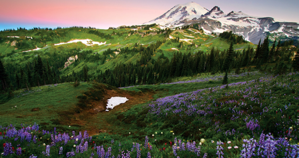 MOUNT RAINIER: ONE OF BEST TRAILS IN AMERICA FOR BACKPACKING AND HIKING.