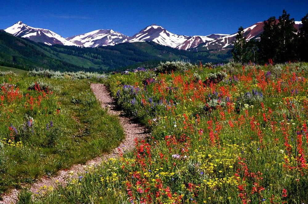 the four pass loop passes through maroon bells and the snowmass wilderness
