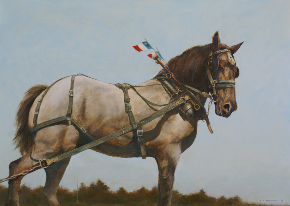 Acadian Horse