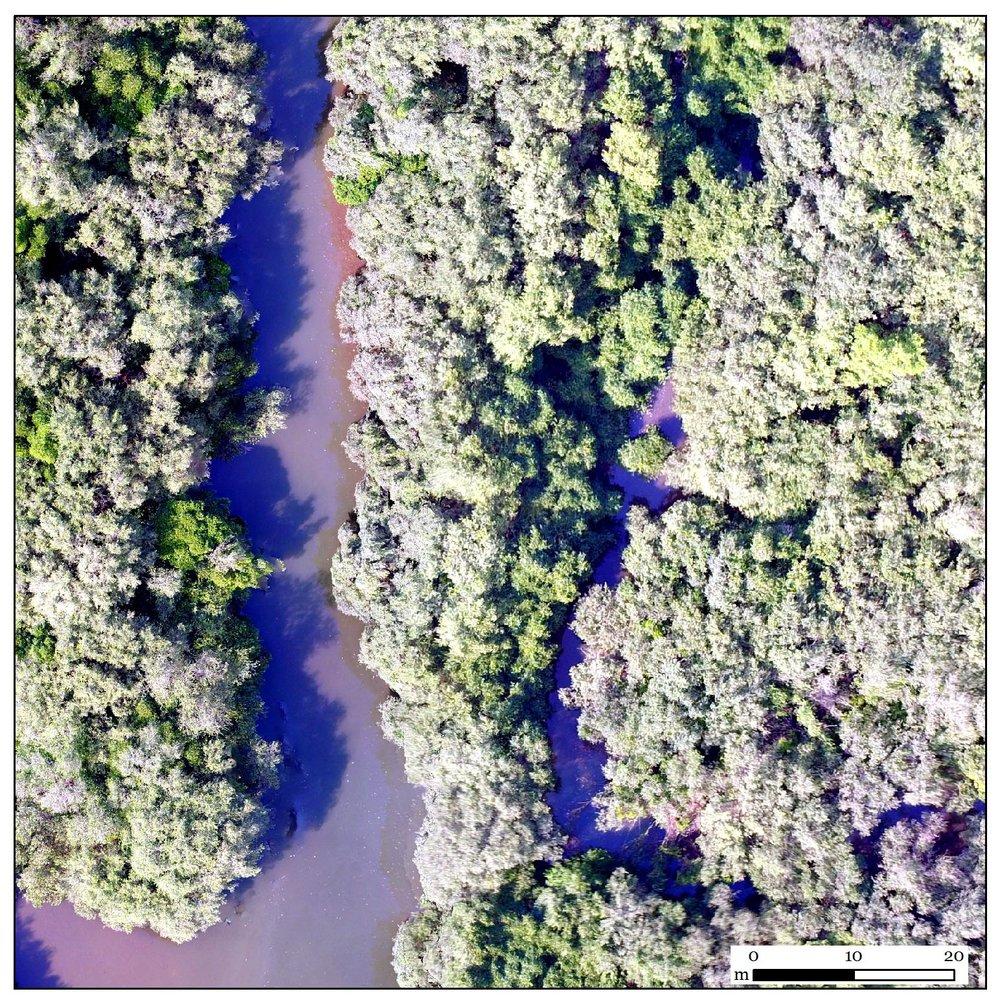 Original UAV image