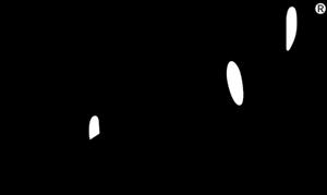Persol-logo-2CA3D94E39-seeklogo.com.png