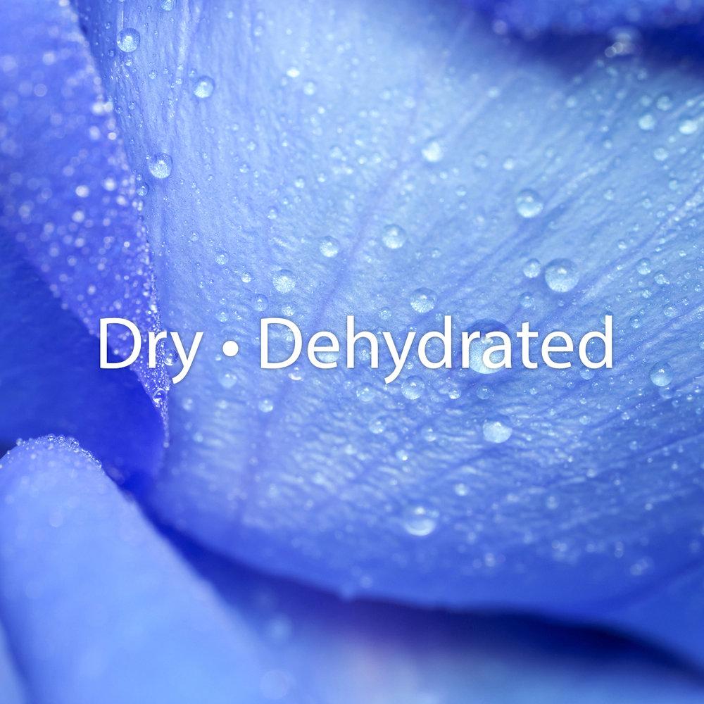 Dry_dehydrated.jpg